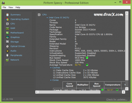 Speccy Professional Crack + Serial Number Full Free Download